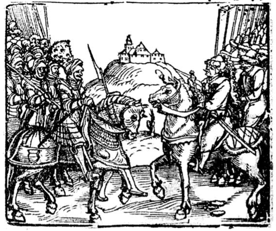 26 января 1564 года произошла Битва при Чашниках